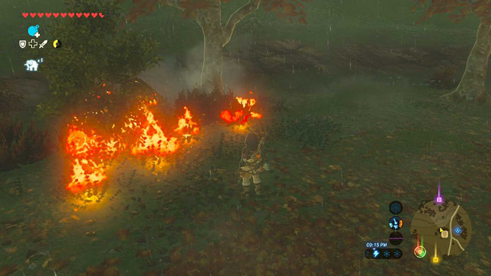Link standing in front of burning grass and trees
